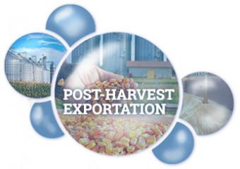 Post-Harvest Exportation Bequisa