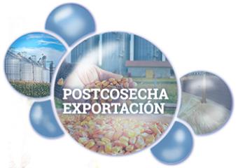 Postcosecha Exportación Bequisa