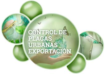Control de Plagas Urbanas Exportación  Bequisa